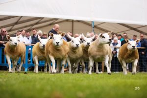 Females flourish at Royal Highland