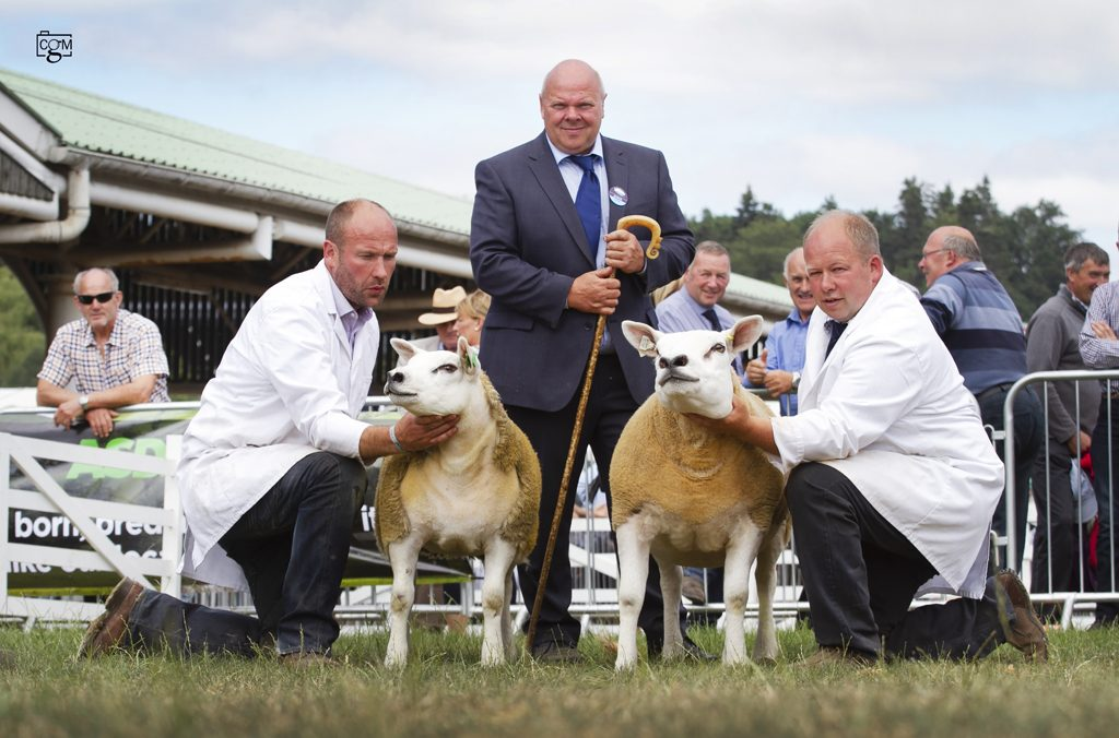 Procters take Great Yorkshire Show championship