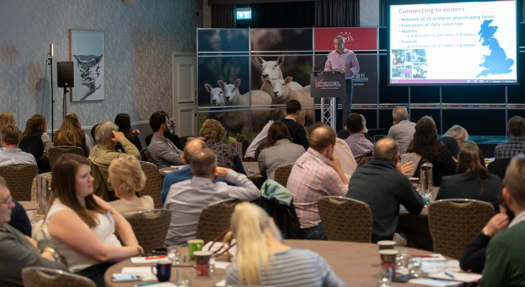 Texels bringing benefits to all iTexel Conference hears